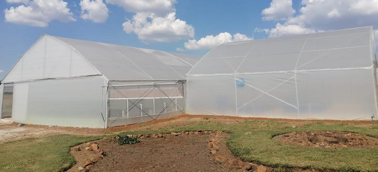 INMED Launches First Aquaponics Social Enterprise